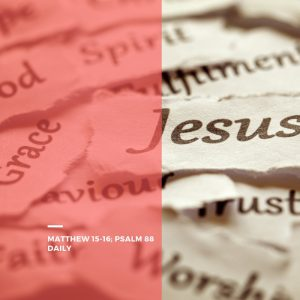 Who is Jesus words